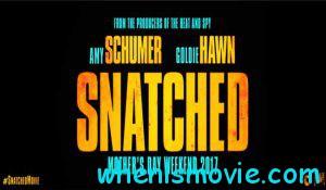 Snatched movie 2017