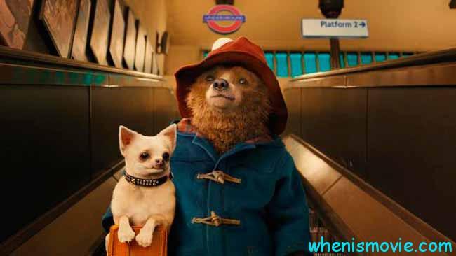 Paddington with his dog