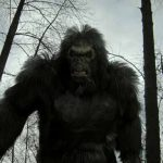 List of best Bigfoot movies to watch