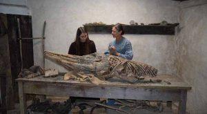 Katharine Hamilton in Mary Anning & the Dinosaur Hunters