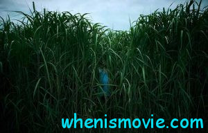 In the Tall Grass promo